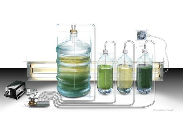 Scientific American The Amateur Scientist 17