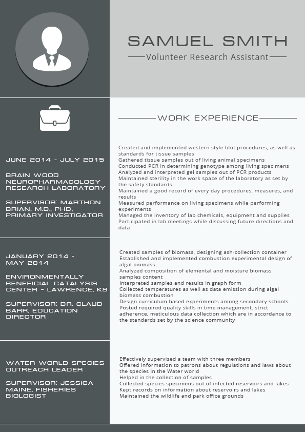 2016 format resume marketing manager on behance