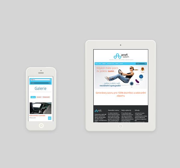 logo Website flyer print