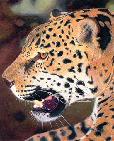 traditional technique pencil crayon pastel acrylic brush work watercolor