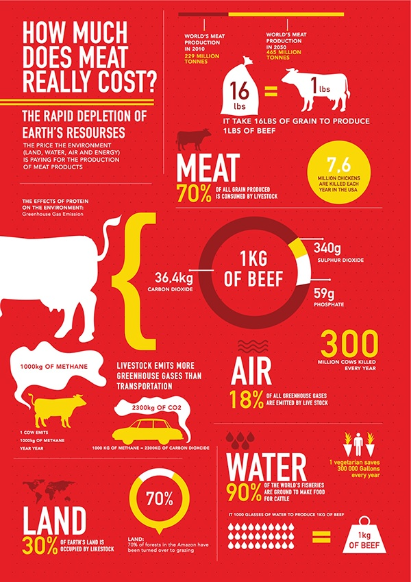 Infographic how much does meat really cost on behance for How much does it cost to make custom t shirts