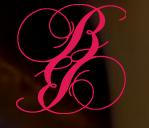 beauty boudoir  fashion
