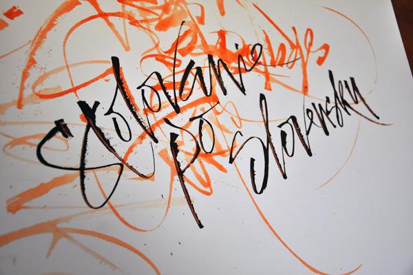 brush pen ink swash sentence