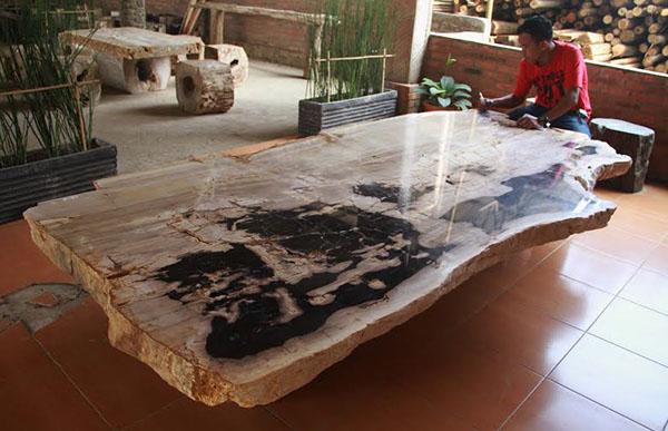 Petrified Wood Tables. Petrified Wood Tables