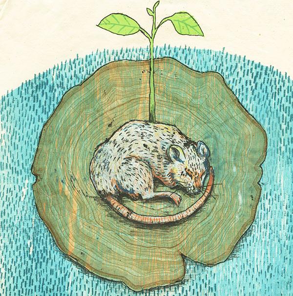 monoprint,monoprinting,printmaking,animals,Nature