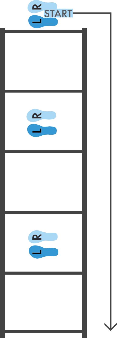 ladder diagram jump fit bird view    diagrams    agility    ladder       jump    rope on behance  fit bird view    diagrams    agility    ladder       jump    rope on behance