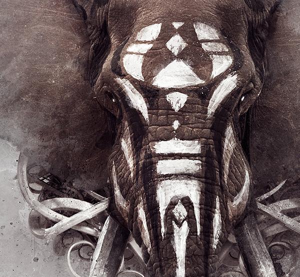 Nature bird elephant 7 pillars life