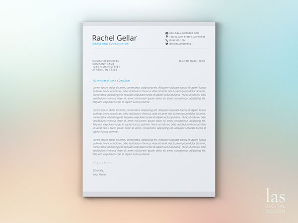 write and essay - Gaute Hallan Steiwer cover letter for