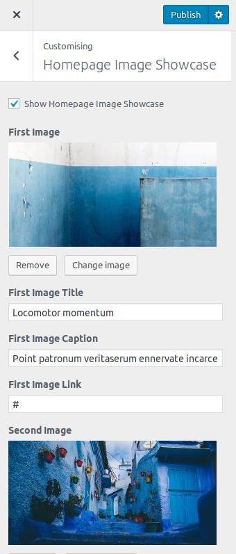 Mostrar - Custom WordPress Theme