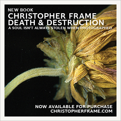 death destruction book life hurricane Flowers hope soul