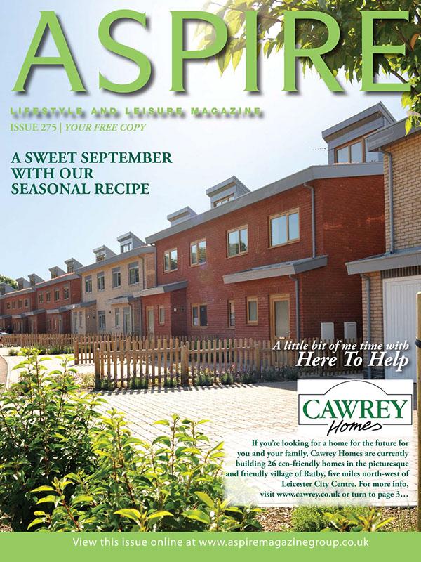 Aspire Magazine Continued on Behance