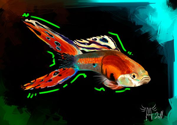 Peces de acuario on pantone canvas gallery for Pescados para acuario
