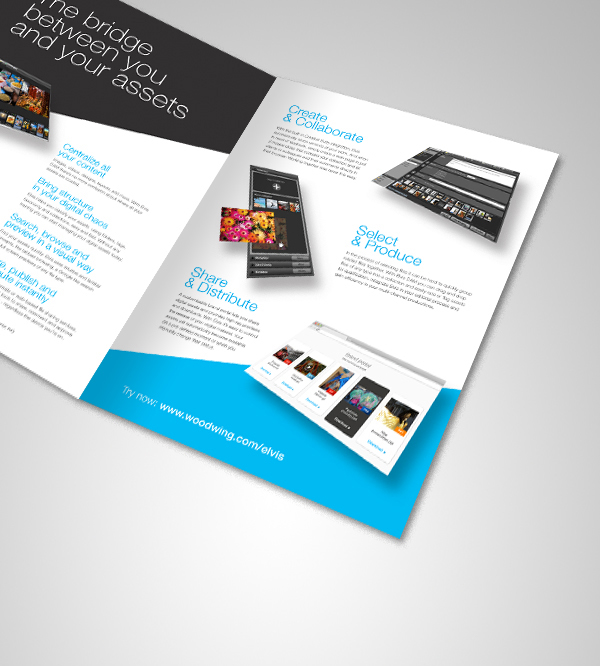 software for designing brochures - elvis dam digital asset management on behance