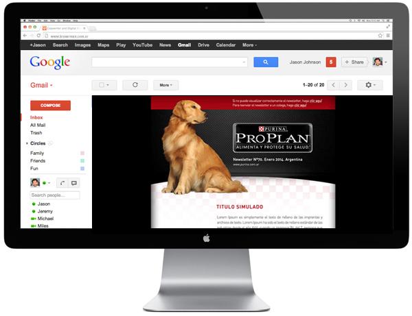 newsletter Web design vet