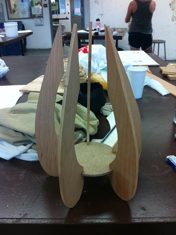 Physalis alkekengi on risd portfolios - Interior design students for hire ...