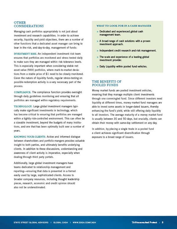 White Paper Design Templates Cash White Paper Template