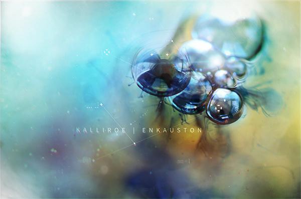 Kalliroe - Enkauston - Macro studies on Behance