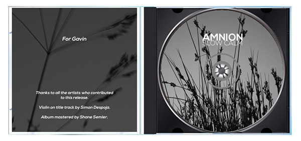 amnion Ambient modern classical CD Cover Design Album Cover Design REMIX