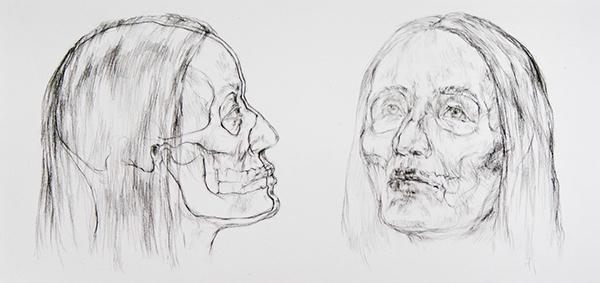 skull reconstruction scientific bone