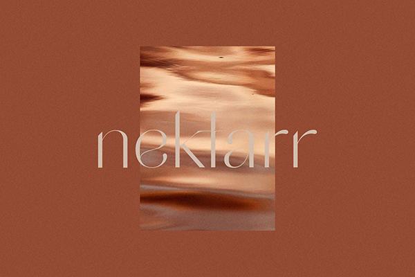 Logo Design: Nektarr