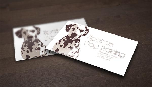 Spot on dog training on behance colourmoves