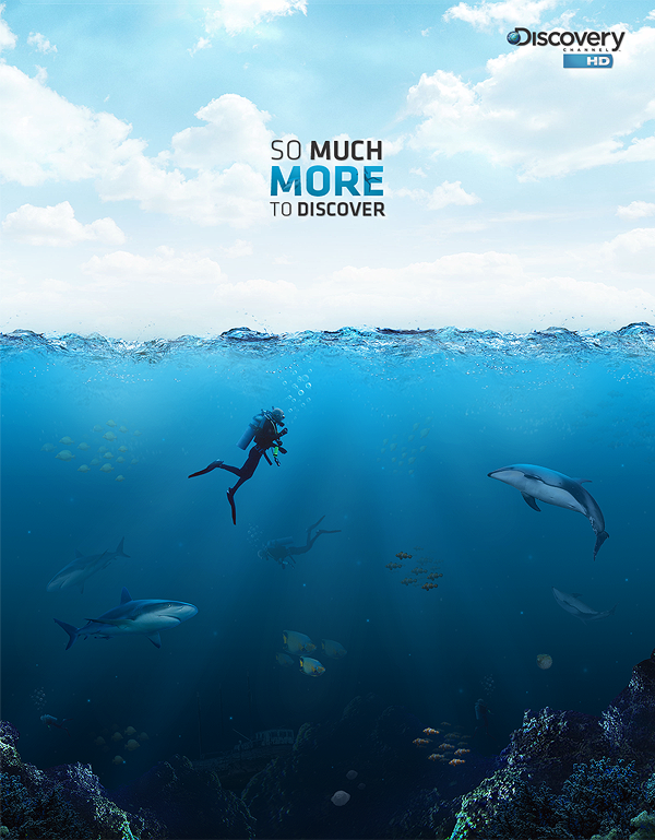 Discovery Channel Posters Discovery Channel Poster on