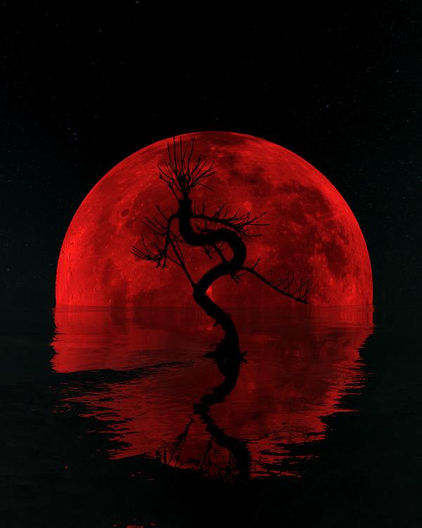 Bloodmoon Bonsai - 3D Render