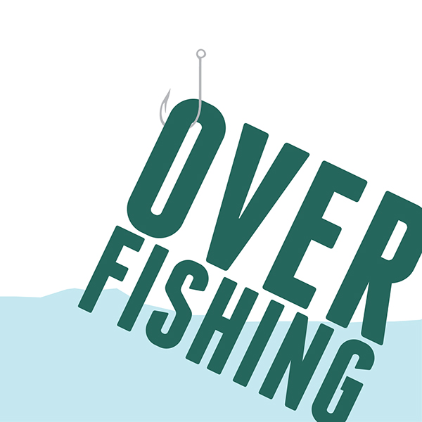 visual booklet showing facts and figures regarding overfishingOverfishing Facts