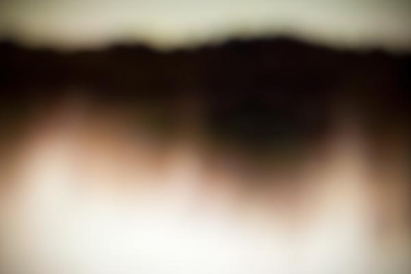Photography  Shark Night  shark week  Absract