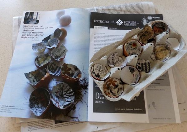 evolution egg shells visualization altered installation eggs