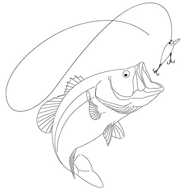 drawing of a largemouth bass on behance Food Clip Art Free Family Clip Art Free
