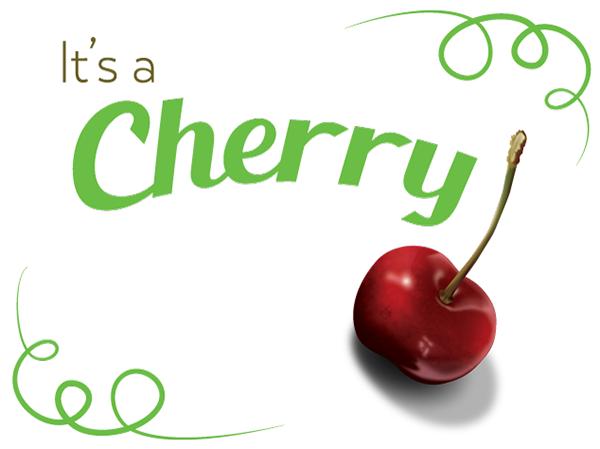 vector cherry Illustrator vectorize