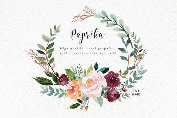 Watercolor Flower Clipart Paprika By Twigs And Twine On Behance