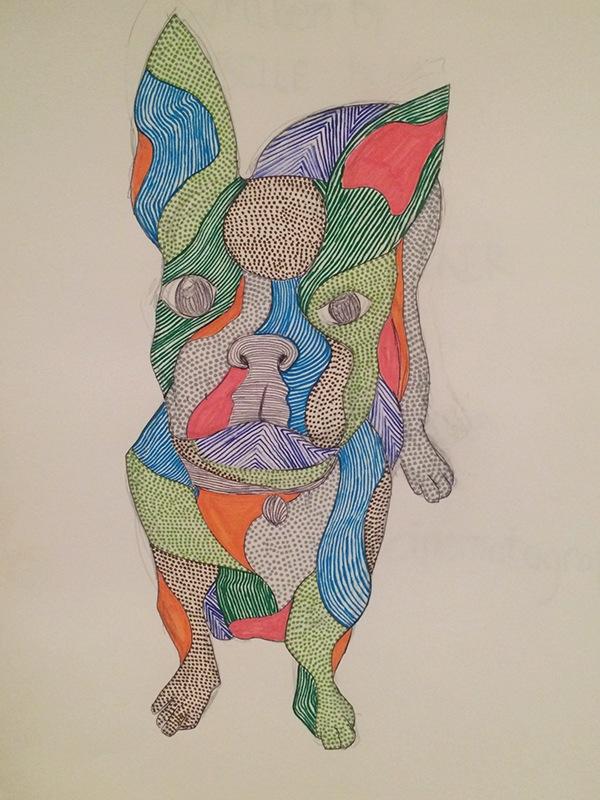 animal Project ILLUSTRATION  lines pattern