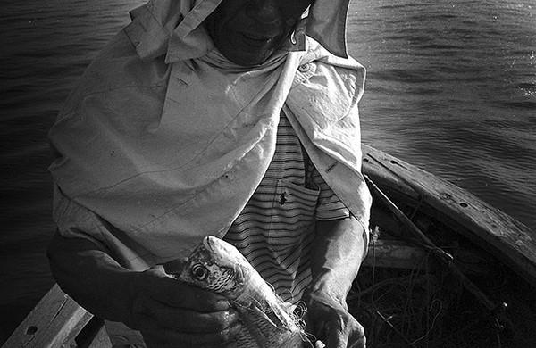 film photography b&w sea
