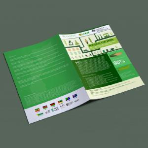 Data Design in Kenya data visualization infographics report design