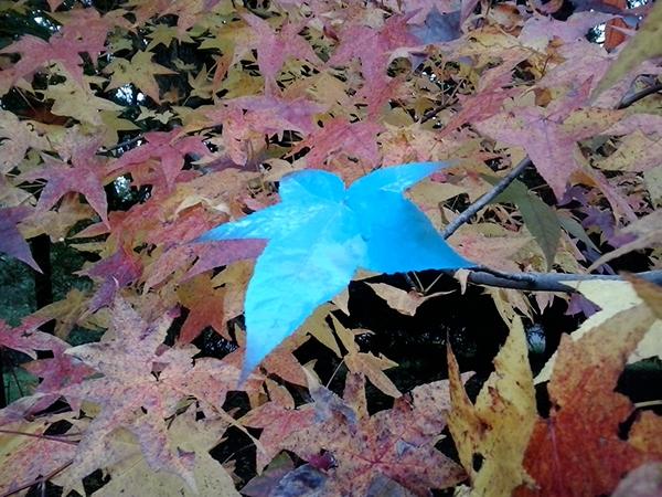 p-ars andrea roccioletti P-Ars 2013 www.p-ars.com Elements & Colors