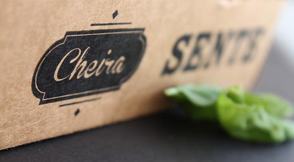 Pizza Pack italia pizzaria take-away take away box Food