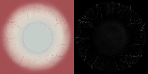 3D Modeling - Human Eye on Behance
