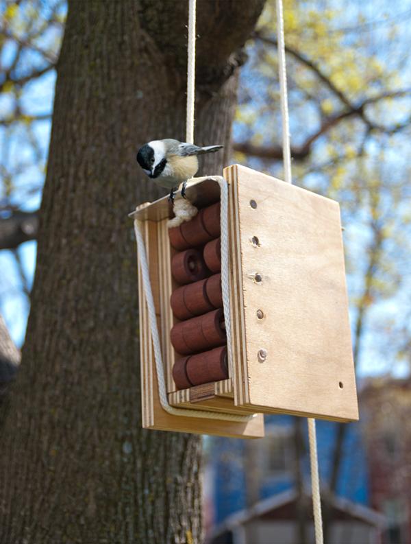 chickadee bird house design