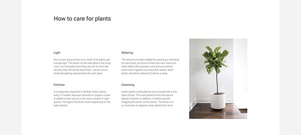 Indoor Plants — Landing Page