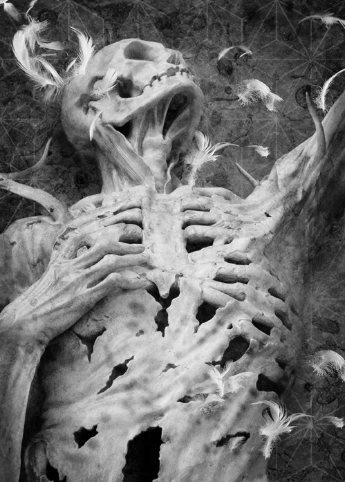 ILLUSTRATION  Dark Fiction horror