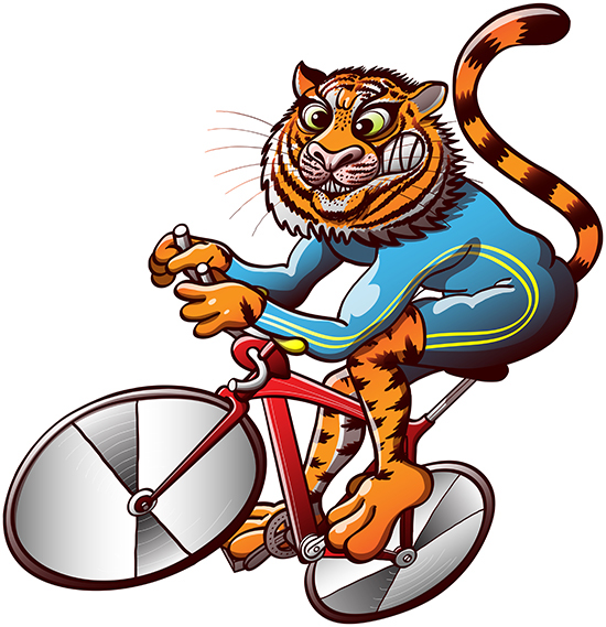 Brave tiger competing in a bike race