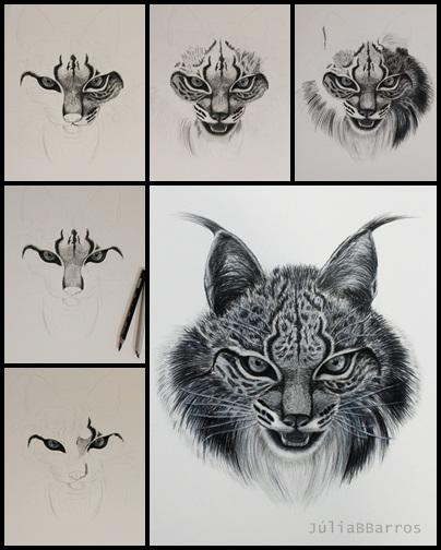 Iberian Lynx Drawing Iberian Lynx