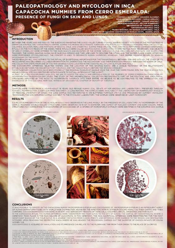 capacocha cacicazgo4 paleodieta Micología Fotografia diagramación diseño poster expo