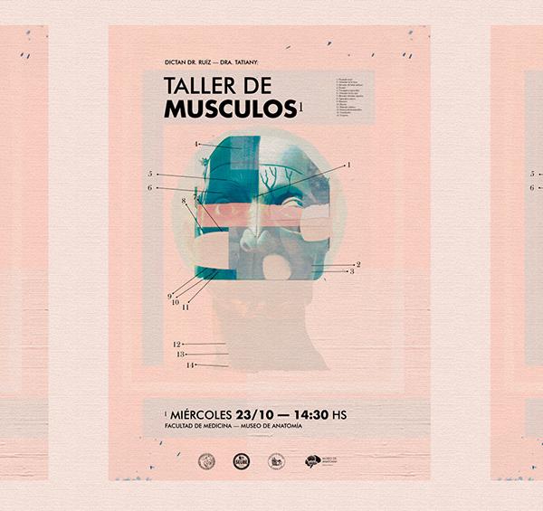 Museo de Anatomía — Sistema de identidad