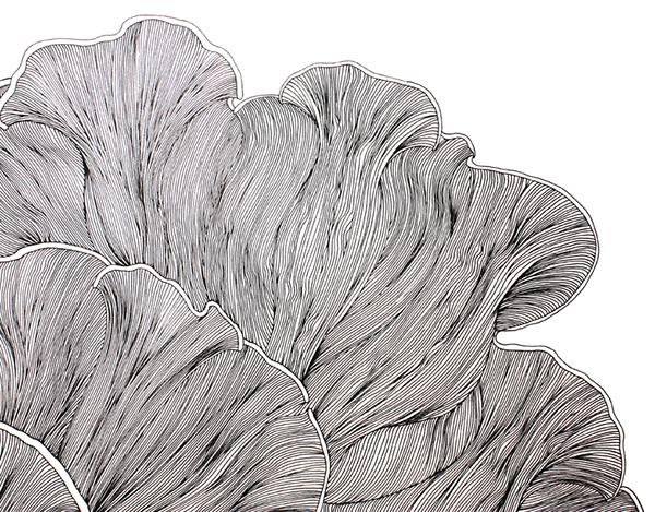 Fine Line Art : Fine line drawing pattern design on behance