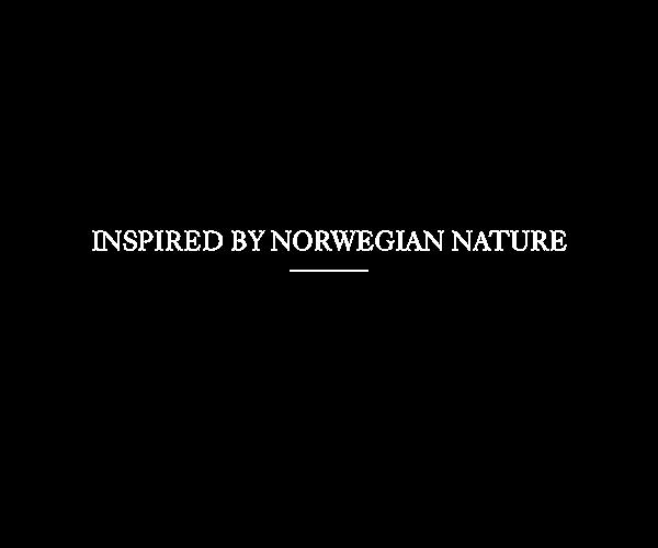 linje espresso maker machine wood Innovative norwegian Coffee Experience