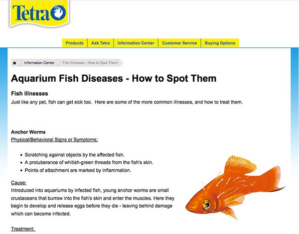 Tetra Illnesses fish sick  tertapond tetrafuana marineland