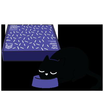 Cat ecocat Litter Cat Litter branding  visual identity purple brand Montreal